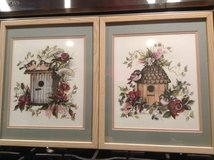 Birdhouse Framed Pictures in Chicago, Illinois